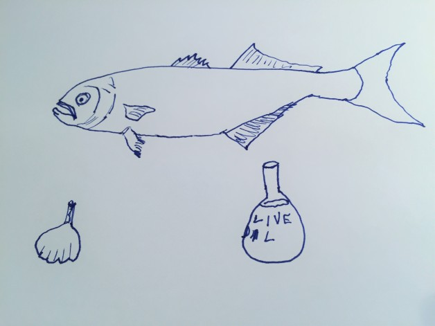 bluefish-mantecato