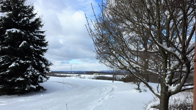 Snow Richmond Farm
