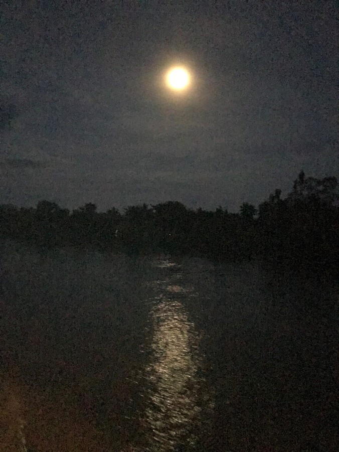 Moonlight over Mekong